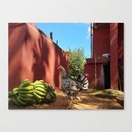 Chicken and Bananas Canvas Print