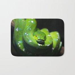 Green tree python (Morelia viridis), on a tree branch, dark background Bath Mat