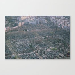 Look What You've Done Canvas Print