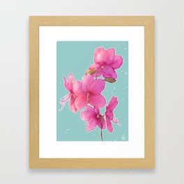 Rhododendron albrechtii Framed Art Print
