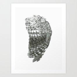 Owl Wing Art Print