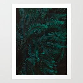 Blue Fern Twilight Art Print