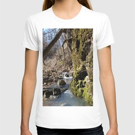 Alone in Secret Hollow with the Caves, Cascades, and Critters, No. 7 of 20 T-shirt