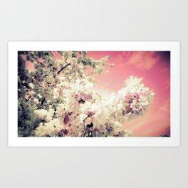 Peachy Pink Lavender Flowers Art Print
