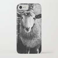 sheep iPhone & iPod Cases featuring Sheep by SilverSatellite