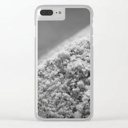Ile de ré Salt Clear iPhone Case
