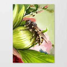 Wasp on flower 6 Canvas Print
