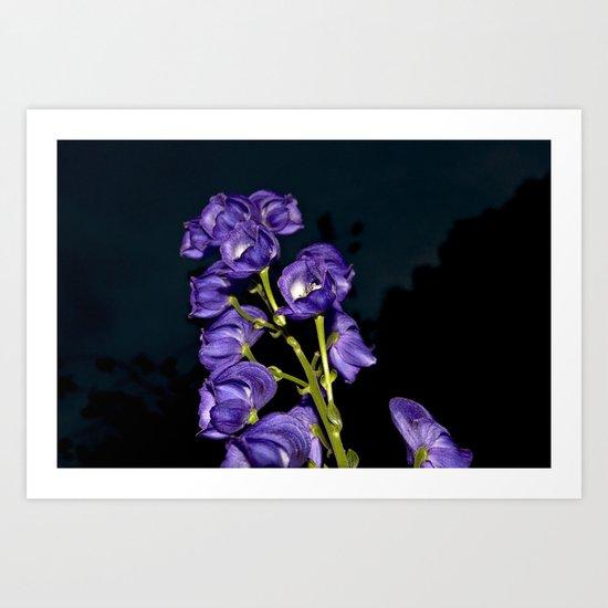 Dark Purple Elegance Art Print