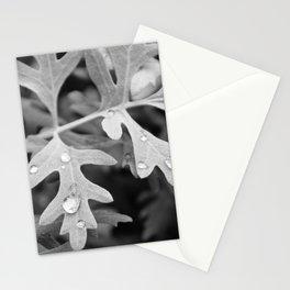 Wintry Rain Stationery Cards