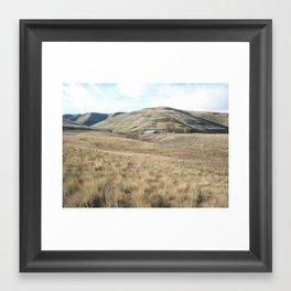 Pheasant Country Framed Art Print