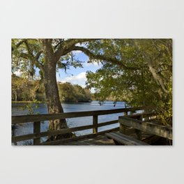 Suwannee River Boardwalk Canvas Print