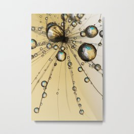 Single Dandy Seed Web Drops Metal Print
