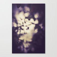 itsy bitsy Canvas Print