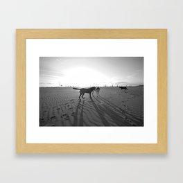 Dogs on the Beach Framed Art Print