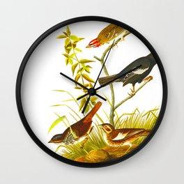 Lark Finch, Prairie Finch, Brown Song Sparrow Wall Clock