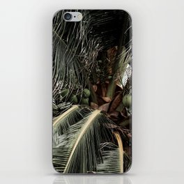 Green Coconuts iPhone Skin