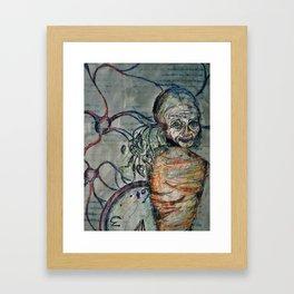 Iberis Sempervirens Framed Art Print