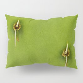 Englemann's Prickly Pear Cactus Two Spines Pillow Sham