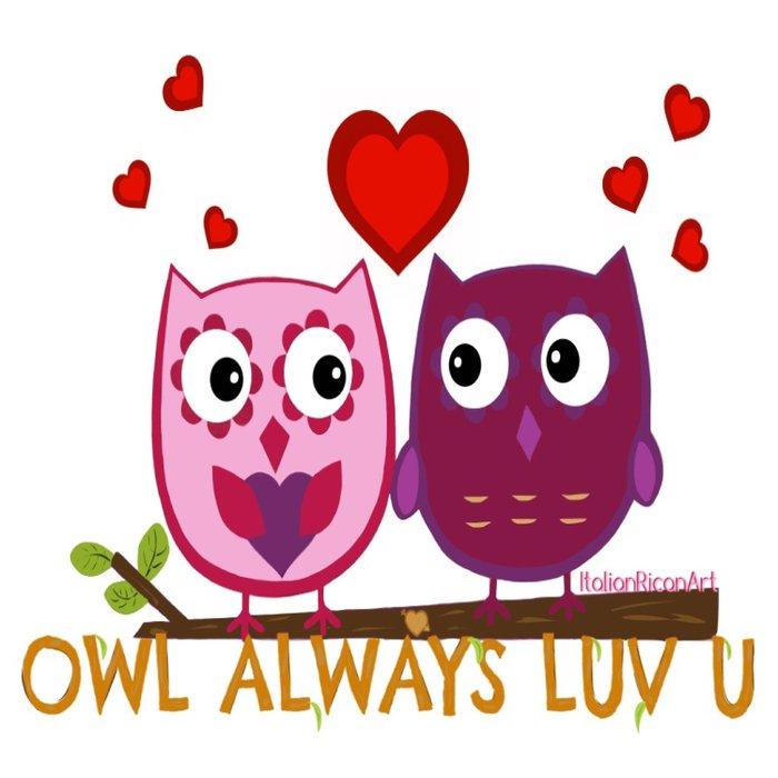 Owl Always Love You Comforters