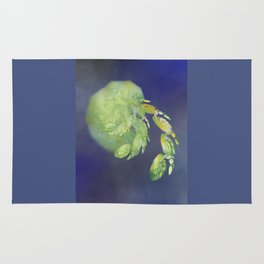 one green Apple   (A7 B0232) Rug