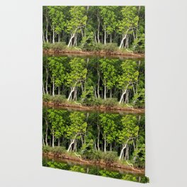Enchanted Celtic Forest Wallpaper
