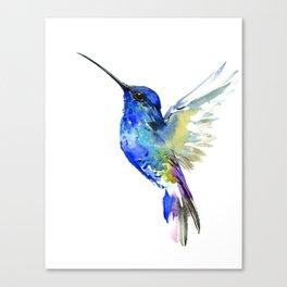 Hummingbird, Turquoise BLue Flying Bird decor Canvas Print