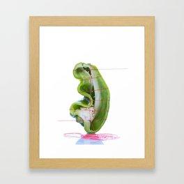 Bell Pepper Framed Art Print