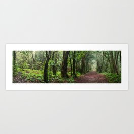 Anaga forest Art Print