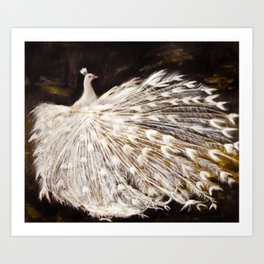 White Peacock Oil Painting Art Print