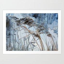 WINTER bulrush Art Print