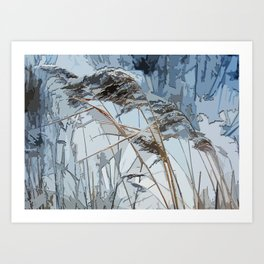 WINTER bulrush Art Print