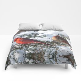 Sunny Winter Cardinals in the Adirondacks Comforters