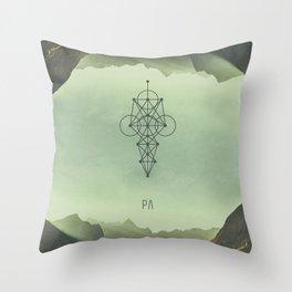 003-0707-17 Throw Pillow