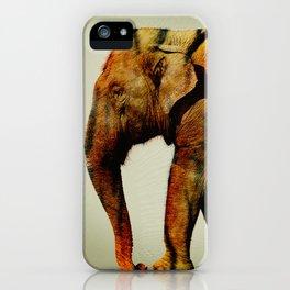 Tiger Elephant iPhone Case
