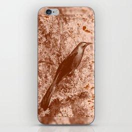 ghost raven iPhone Skin