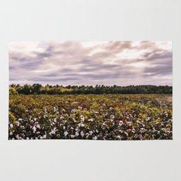 Cotton Field 23 Rug