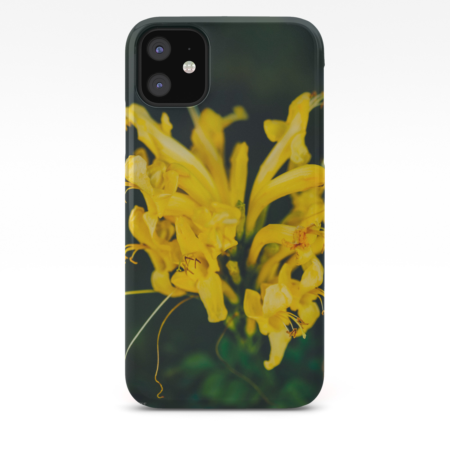 beautiful yellow flower on black background botanical photography society6 iphone case by lightwanderer society6 society6