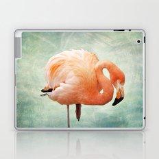 Miami Bound Laptop & iPad Skin