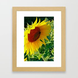 Exit 17 * Sunflower Bee Food Framed Art Print