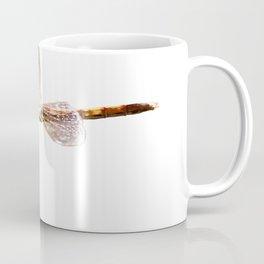 Dragonfly Resting On Seed Head Isolated Coffee Mug