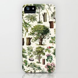 Adolphe Millot - Arbres A - French vintage botanical poster iPhone Case