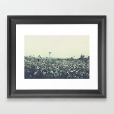 Sicily flowers Framed Art Print