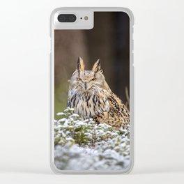 Western Siberian Owl Clear iPhone Case