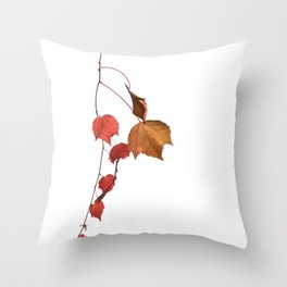branch of autumnal tree Throw Pillow
