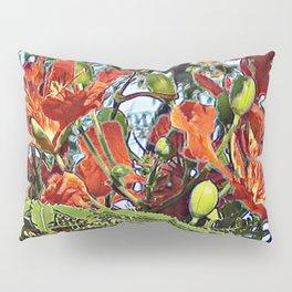 Royal Poinciana Tree Full Bloom Pillow Sham