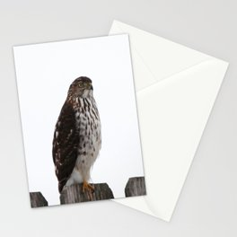 Looking for Mice Stationery Cards