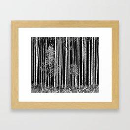 Ode to Ansel II Framed Art Print