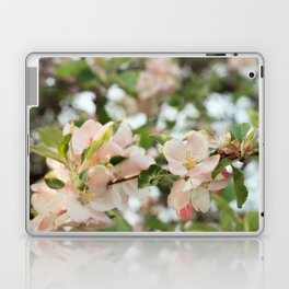 Apple Blossoms Laptop & iPad Skin