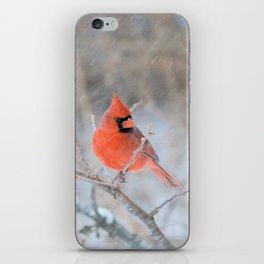 Hanging On (Northern Cardinal) iPhone Skin