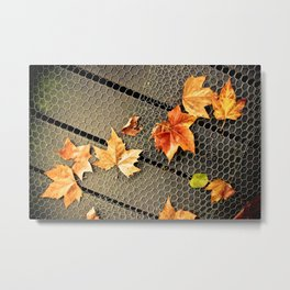 Trail of Leaves Metal Print